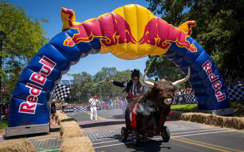 Client - Red Bull NZ